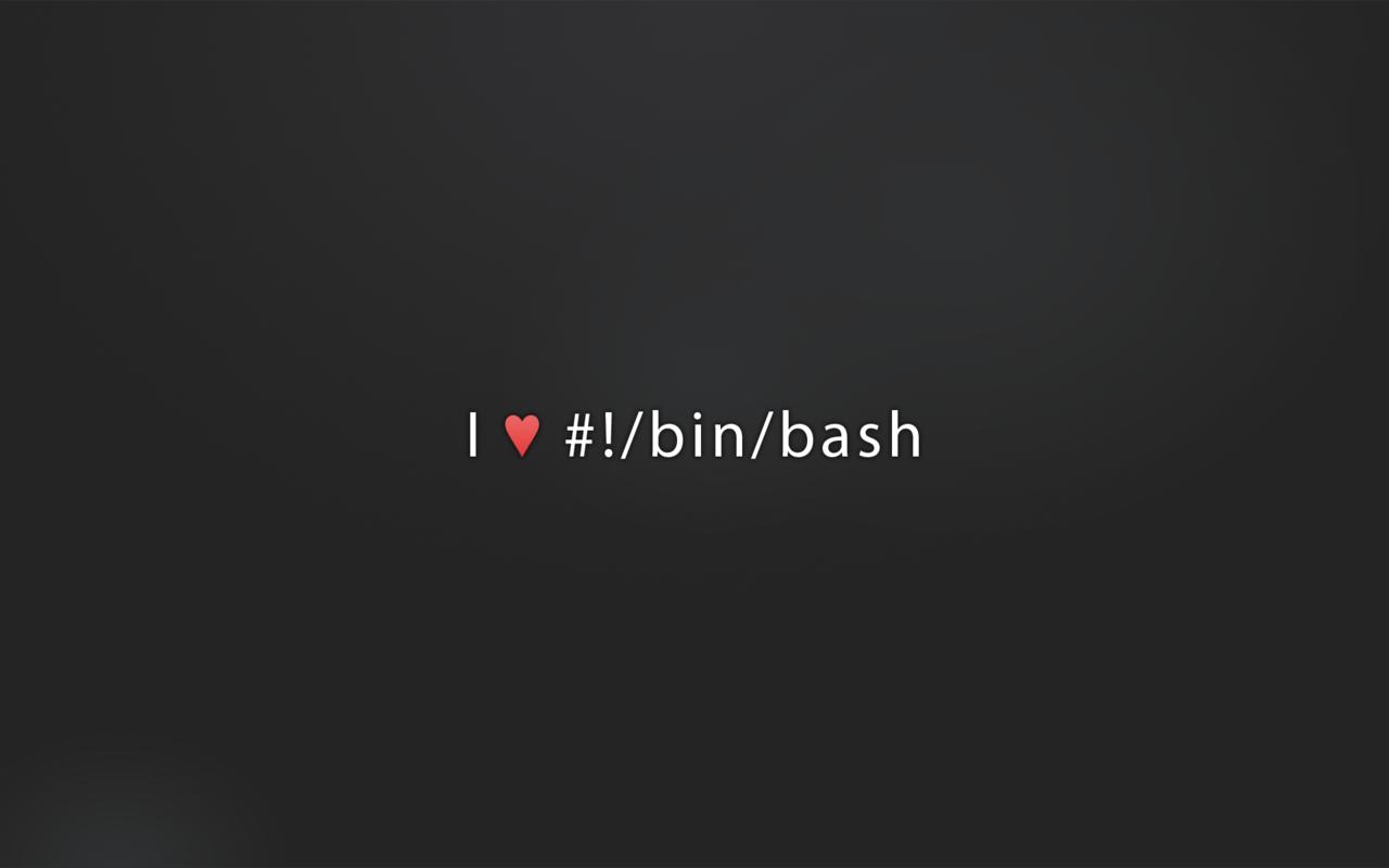 bash-programming-14558